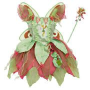 Tinkerbell Fairy Dress Up Age 5/8