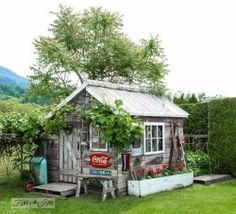Rustic garden shed with old signs, tools and a grapevine, on FunkyJunkInteriors.net
