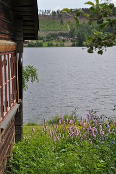 Summer paradise at this Swedish #cottage in the heart of picturesque Hälsingland #Sweden, where can sleep 8 people. Plus, there's a #sauna with a beautiful view of the lake!