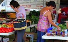 Food Stamp Spending At Farmers Markets Is Up 600% Since 2008 - http://modernfarmer.com/2015/08/farmers-markets-food-stamps-up-600-percent/?utm_source=PN&utm_medium=Pinterest&utm_campaign=SNAP%2Bfrom%2BModern+Farmer