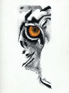Eye Of The Wild Series Drawing