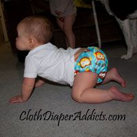 Bumkins All-In-One Cloth Diaper Review (Cloth Diaper Addicts)