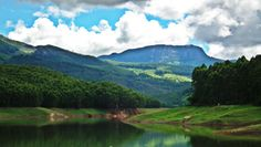 This place is following your voice..... Do you understood this place????????munnar hotels and resorts