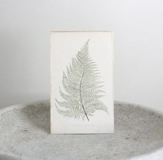 Antique Fern Print 1867 E.J. Lowe 6 x 9 3/4 inches by TheBlueTwig, $40.00
