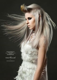 Goldwell Color Zoom 2015 Category: CREATIVE COLORIST Semi-finalist | Poland. Hair: Iwona Klimczak