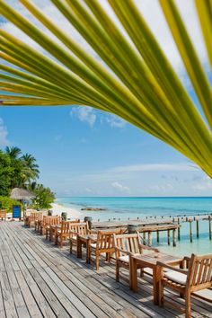 Kuramathi Island Resort in Rasdhoo Atoll, Maldives 10