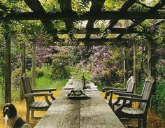 I'd like to do something like this on the paved area of the backyard.Long wooden table for al fresco dining underneath a vine covered canopy. Outdoor Rooms, Outdoor Dining, Outdoor Gardens, Outdoor Furniture Sets, Outdoor Decor, Outdoor Ideas, Rustic Pergola, Metal Pergola, Porches