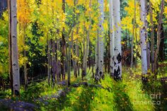 Acrylic Paintings of Aspen Trees | Fall Aspen Forest Painting