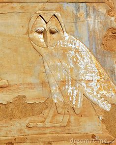 In ancient Egyptian hieroglyphs and art, owls are never depicted in the typical profile position.