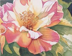 luminous hibiscus in watercolor by Jane Freeman