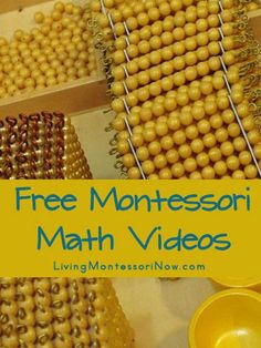 An overview of the Montessori math curriculum with concrete materials to introduce abstract concepts and a sequential understanding of mathematical concepts - Living Montessori Now Montessori Homeschool, Montessori Classroom, Montessori Activities, Homeschooling, Montessori Quotes, Montessori Toddler, Elementary Math, Kindergarten Math, Teaching Math