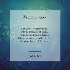 Nikita Gill #poetry #poetic #writing #quote