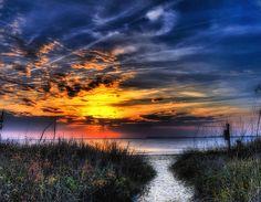 The Path ~ Edisto Beach, South Carolina