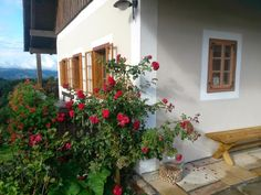 1 Bedroom Guest house in Leutschach to rent from pw. With jacuzzi, Sauna, balcony/terrace and Log fire. Log Fires, Jacuzzi, Balcony, Terrace, Bedroom, House, Fireplace Set, Wood Burning Fireplaces, Patio