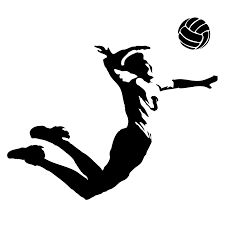 Картинки по запросу волейбол
