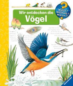 Wieso? Weshalb? Warum? 51: Wir entdecken die Vögel von Patricia Mennen http://www.amazon.de/dp/3473328316/ref=cm_sw_r_pi_dp_bLB.ub1BZ3KFQ