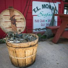 T.L. Morris Seafood Is An Amazing Seafood Shack In Maryland Maryland Seafood, Lighthouse Hotel, Best Crabs, Outdoor Picnic Tables, Winning The Lottery, Local Attractions, Fresh Seafood, Seafood Restaurant, Eat Right
