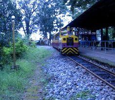 Toy Train - Madikeri