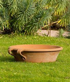"""'frostfeste Terracotta Coque """"crokus pour planter ou comme Mini bassin 40 cm"""