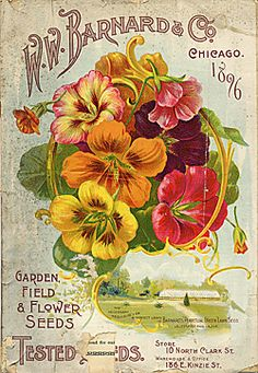 Vintage seed catalog covers at Smithsonian archives