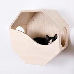 Wood Dog Bed, Wood Cat, Modern Cat Furniture, Pet Furniture, Wooden Cat House, Pet Hammock, Hammock Stand, Dog Beds For Small Dogs, Cat Room