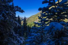 Booth Lake Trail begins at Booth Falls Road in East Vail, CO and ends at Booth Lake. The trail climbs up the Booth Creek valley through mos...