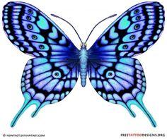 Model tatouage papillon_5