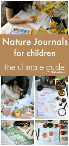 Perfect for homeschool science and for Exploring Creation with Botany: the ultimate guide to nature journals for children :: children's nature study guide Diy Nature, Nature Study, Science And Nature, Nature Crafts, Nature Based Preschool, Life Science, Outdoor Education, Outdoor Learning, Home Learning