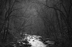 Dark-Valley