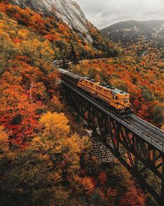 "Hottest Photo New Hampshire aesthetic Concepts If I believe week end in New England"", Vermont's landscape (and cheese), Maine's seafood or Cape Cod's beac. New Hampshire, Travel Photographie, Autumn Scenes, Autumn Aesthetic, Autumn Cozy, Fall Wallpaper, Autumn Photography, Fall Pictures, Hello Autumn"