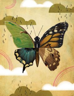 o Daniel Chang Observational Drawing, Surreal Collage, Close Image, Surrealism, Photo Art, Cool Photos, Art Photography, Illustration Art, Butterfly