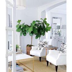 White coastal/beach living room.  For more pins please follow me at https://www.pinterest.com/annelouise1959/beach-coastal-interiors/