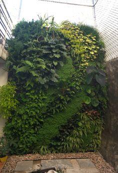 Vertical Farming, Going Up Instead Of Sideways – Greenest Way Vertical Garden Plants, Vertical Garden Design, Vertical Farming, Garden Landscape Design, Vertical Gardens, Agriculture Verticale, Indian Garden, Green Wall Decor, Plant Wall