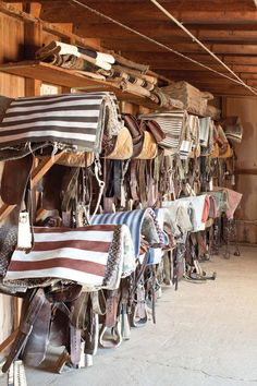 Saddles with Rugs from LOFThome.com