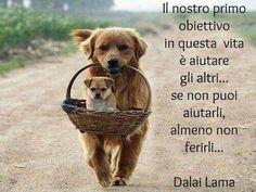 ....  #Dalai #Lama