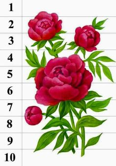 Montessori Kindergarten, Preschool, Primary Classroom, School Lessons, Adult Coloring Pages, Flower Designs, Flower Power, Nursery, Jar