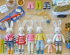 The Angie Bunny complete kit - A DIY kit for making a family of bunnies. Youll get everything you need to crochet a family of 3 Angie bunnies and 2 Baby bunnies. What is in this kit: • 5 crochet patterns as follow: Angie Bunny Baby Bunny Spring Gardener Cosy Easter Outfit Turtleneck