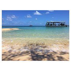 Great Barrier Reef 最高に綺麗な場所でした 海に入りたかった #グレートバリアリーフ#greatbarrierreef#サンゴ礁#船で往復4時間#この後豪雨でバッグの中身もびしょ濡れ#乾かないままパッキンして次の場所へ#australia by misa1120mk http://ift.tt/1UokkV2