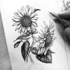 Sunflower Sketches, Sunflower Drawing, Sunflower Tattoos, Pencil Sketches Of Flowers, Flower Sketch Pencil, Sunflower Illustration, Flor Tattoo, Arm Tattoo, Sleeve Tattoos