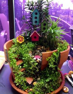 plantes d'intérieur idées de loisirs créatifs aménagement paysager des plantes en pot cassé des objets décoratifs