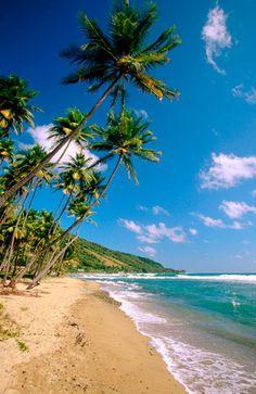 Beach in Loiza, Puerto Rico