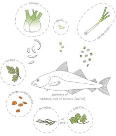 fish soup diagram, #drawing by Johanna Kindvall - #illustratedrecipe