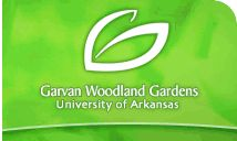 Garvan Gardens is one of the most beautiful places in Arkansas.