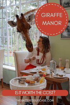 Giraffe Manor: Is It Worth The Cost?
