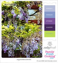 ColorFresh Color Palette  #9 { Wisteria } on FamilyFreshCooking.com © MarlaMeridith.com #design #crafts #DIY #graphics #photography #flowers