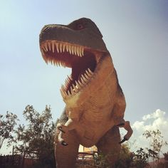 It's dinosaur month at Jax's school and we are going to the dinosaur exhibit at the museum today. So excited to go on my first field trip with him!!
