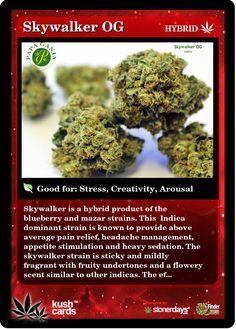 Skywalker OG | Repined By 5280mosli.com | Organic Cannabis College | Top Shelf Marijuana | High Quality Shatter