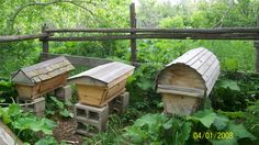 Top Bar Hive Dimensions   What is Top-bar beekeeping and how is it different?