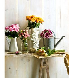 Flowers for Friday... http://gardensandpolkadots.com/2012/03/30/flowers-for-fridays/
