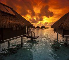 https://flic.kr/p/dUotdz   Hilton Moorea, Tahiti by Tim Moffatt